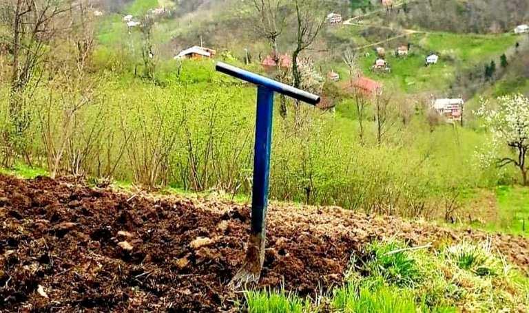 Araklı'da Behçeler Yeşerdi Şimdi Belleme Zamanı