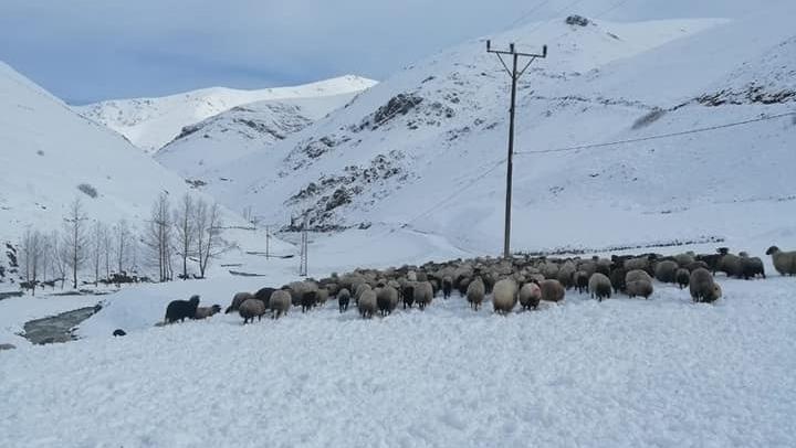 Gezge'de Yaylacılara Kar Engeli