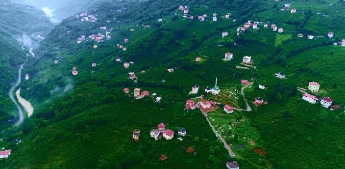 Şehr-i Araklı