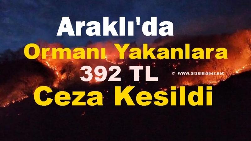 Araklı'daki Orman Yangınlarının Cezası 392 TL