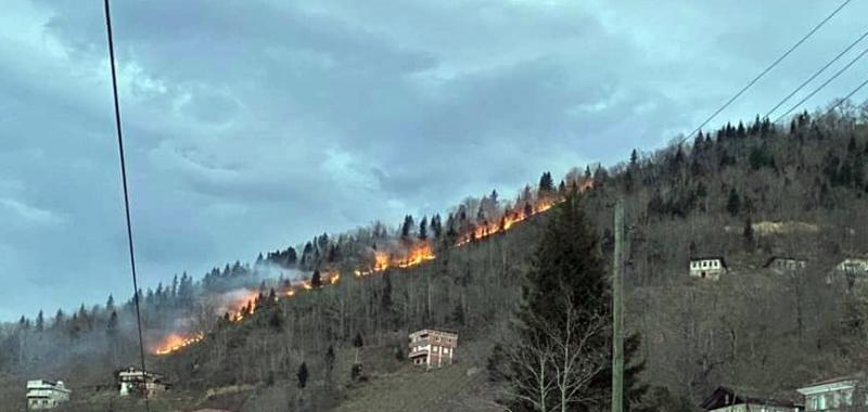 Orman Yangını Genişliyor