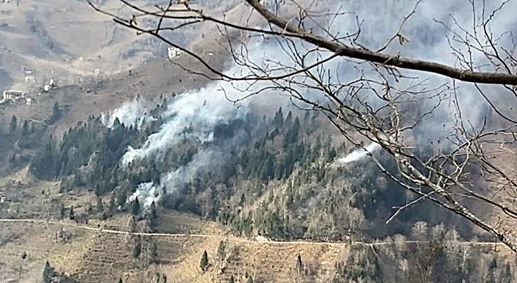 Orman Yangınları Korkutuyor